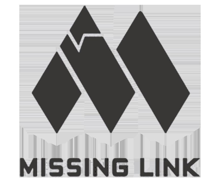missinglinklogo